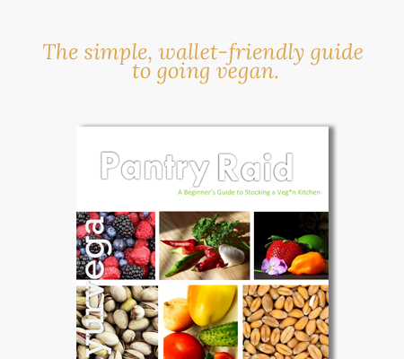 Get a FREE copy of the vegan shopping guide for beginners!